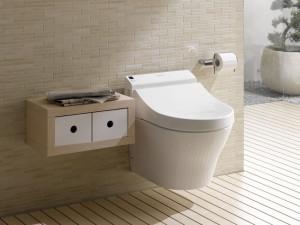 poser un wc suspendu le roi de la bricole. Black Bedroom Furniture Sets. Home Design Ideas