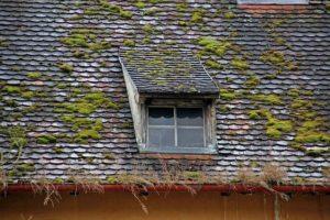 Réaliser le démoussage d'une toiture