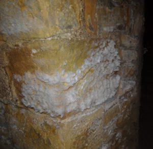 Le salpêtre se forme sur les murs à cause de l'humidité. Voici comment l'enlever.